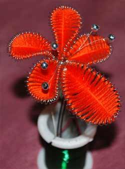 цветок с тычинками