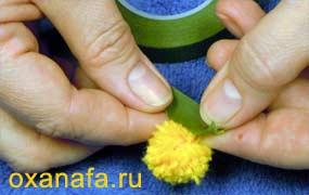 обмотка ветки мимозы тейплентой